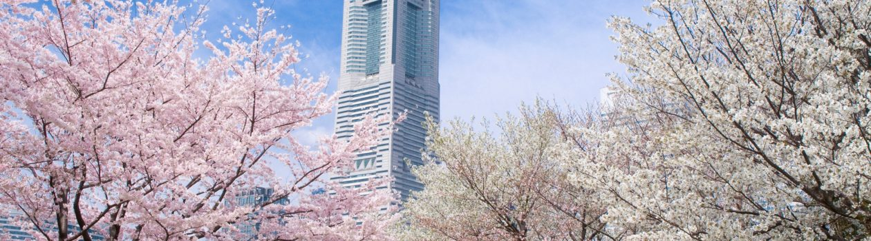 Photo credit:Yokohama Visitors Guide
